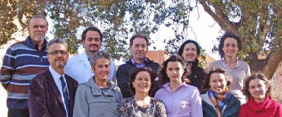 Investigadores e investigadoras del Grupo de investigación de genética y ambiente en las psicosis del Instituto Pere Mata que participan en este trabajo con nanopartículas.