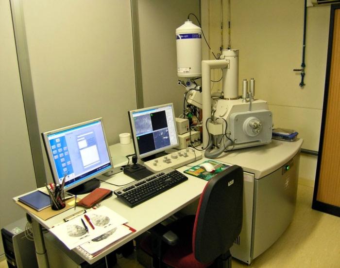 Imatge del Microscopi Electrònic de Rastreig de pressió variable, aparell del Servei de Microscòpia de la URV que l'IPHES utilitza normalment per a estudis de traceologia, i en comparteix amb el personal investigador de París. Andreu Ollé/IPHES.