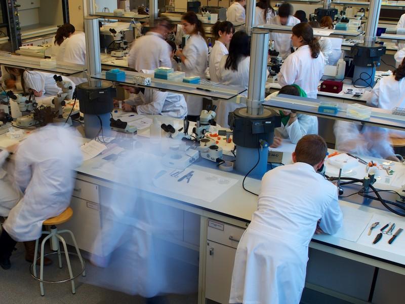 LaboratoriDocència_Enologia
