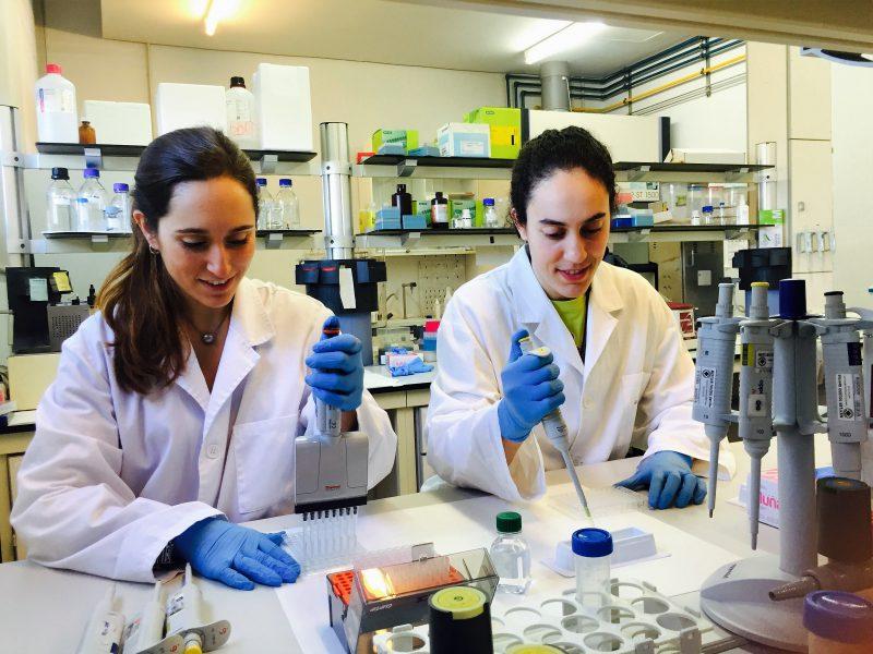 Maria Ibars (esquerra) i Andrea Ardid (dreta), estudiants pre-doctorals autores de l'article, en el laboratori de recerca del Departament de Bioquímica i Biotecnologia.