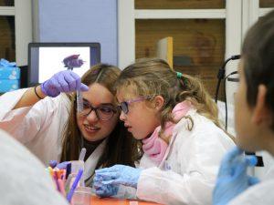 La investigadora Katherine Gil, observant l'ADN del cacau aconseguit després de l'experiment.