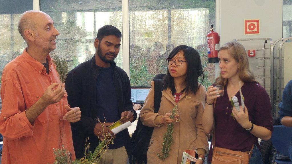 Los estudiantes aprendieron las propiedades culinarias y medicinales de las plantas mediterráneas.