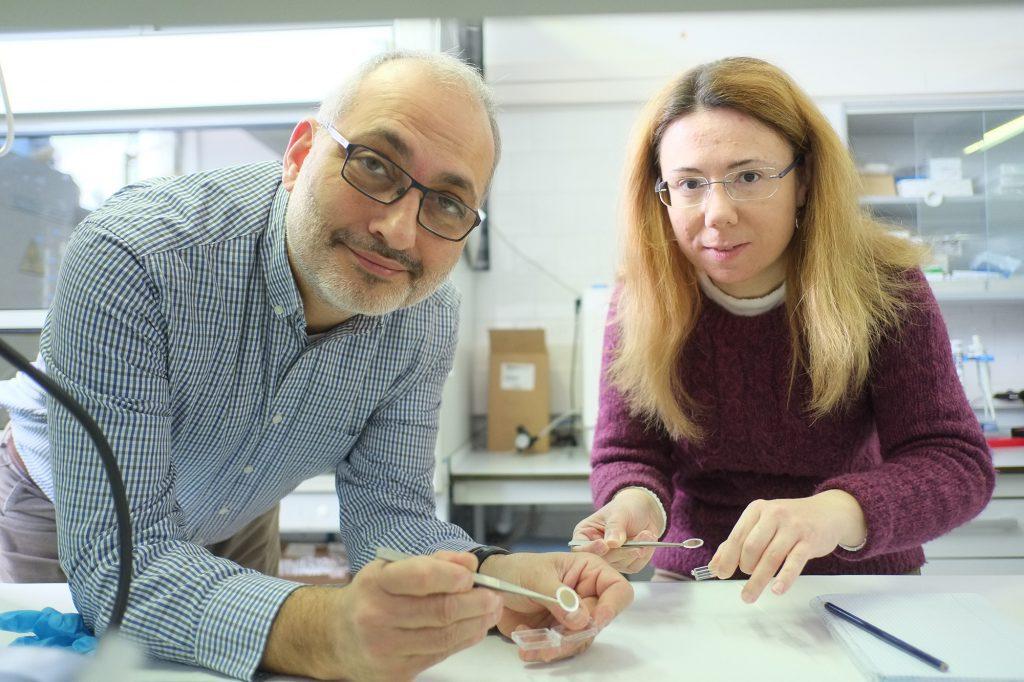 Els investigadors de la URV Lluís Marsal i Elisabet Xifre, al laboratori on s'ha provat l'alúmina nanoporosa.