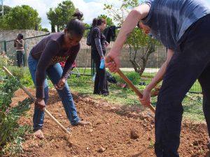 voluntaris a un dels Horts Socials URV
